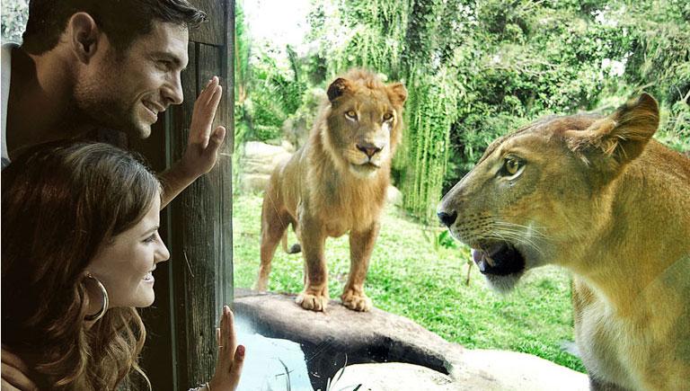 Bali-Zoo6