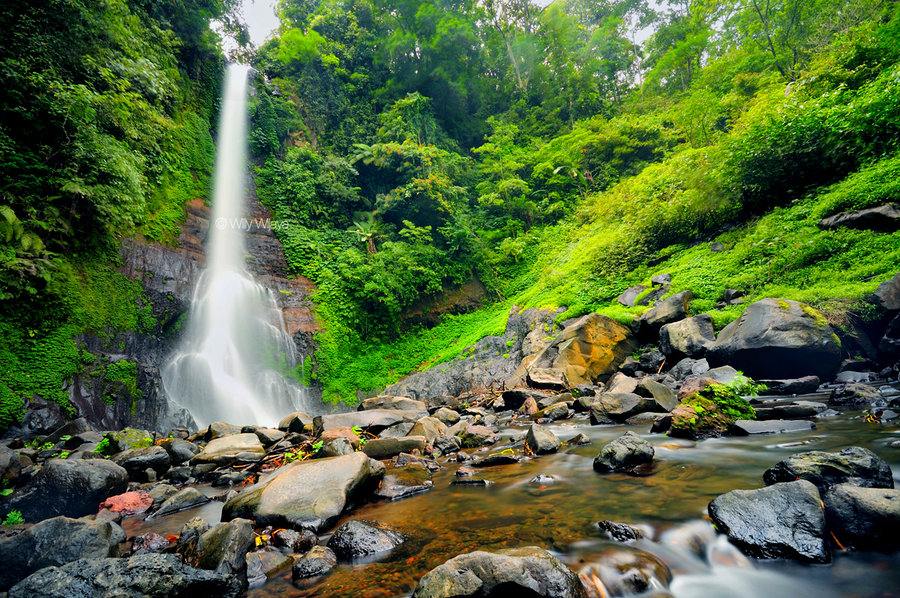 Gitgit_Waterfall_by_Top Bali trip