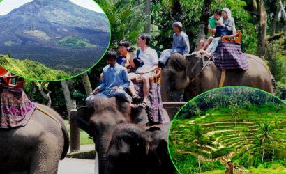 bali-elephan-ride